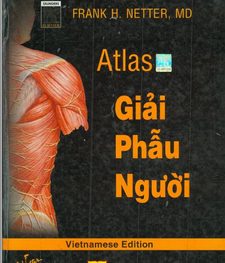 Atlas giải phẫu người Frank H.Netter